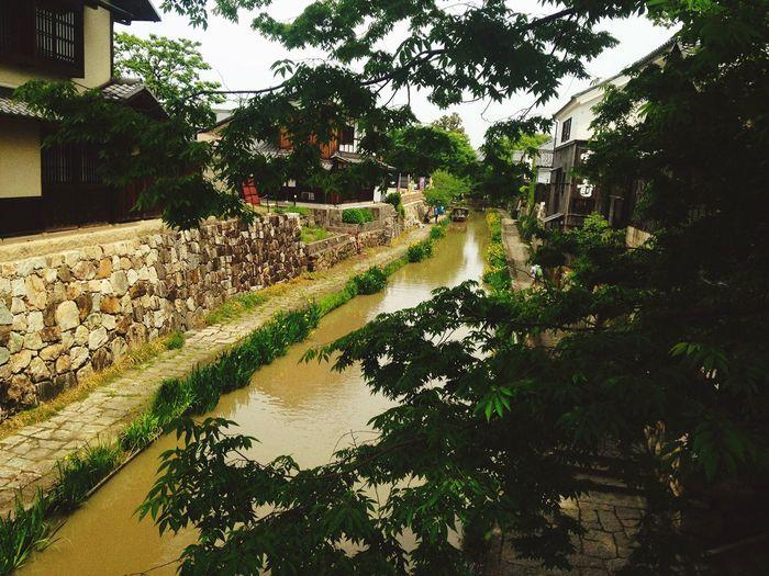 近江八幡 滋賀 るろうに剣心 ロケ地 Water 川 Beauty In Nature
