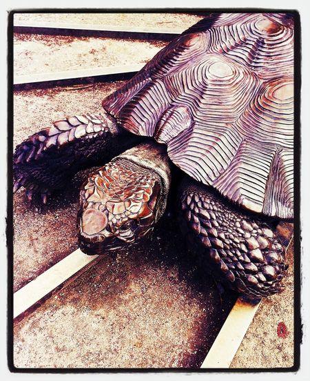 Sculpture Turtle Metal Reptile Garden Decor