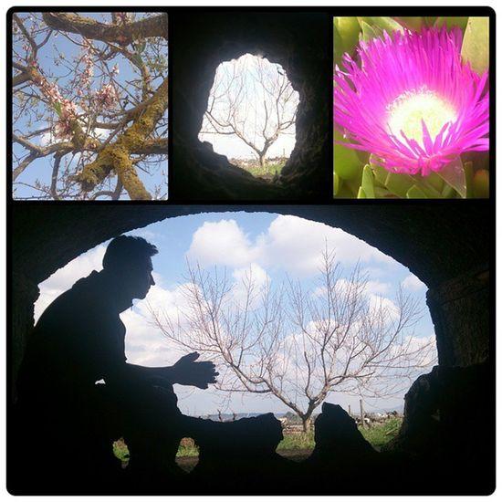 Caminata pre-primaveral...🌞🌼🌳 Merce Letitgo Noacabanunca Lacueva sombra