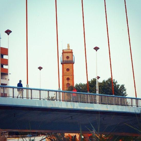 Torre de los Perdigones Sevilla Sevillahoy Sevillagram Sevillagramers