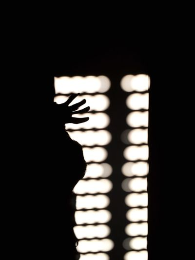 playing with the shadows Self Portrait Shadow Light And Shadow EyeEmBestPics EyeEm Best Shots EyeEm Best Edits Eye4photography  ShotOniPhone6 Shadowplay