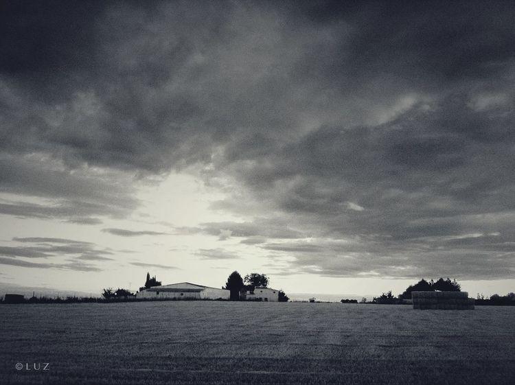 Sunset Blackandwhite Landscape Landscape_Collection