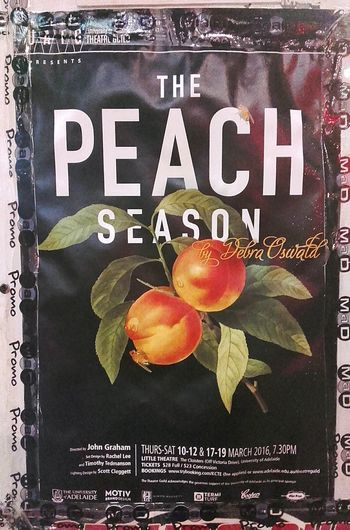 Peach Season Poster Peach Poster Art Peach! Posters Peaches Debra Oswald Posterart Color Photography Posterporn Posterdesign Peach Orchards Poster Collection Colour Posters Posterwall Art Postercollection Poster Color ArtWork Artphotography Postercolor Poster Wall Wall Poster Color Posters