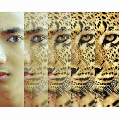 Handsome Boys Lion King