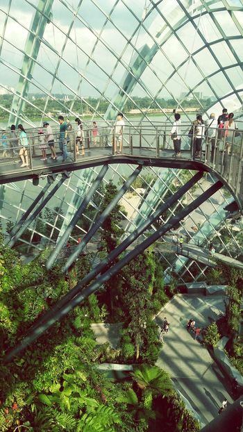First Eyeem Photo Garden Gardens By The Bay Cloud Forest Dome Architecture