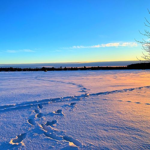 Scenic view of frozen sea against blue sky during winter