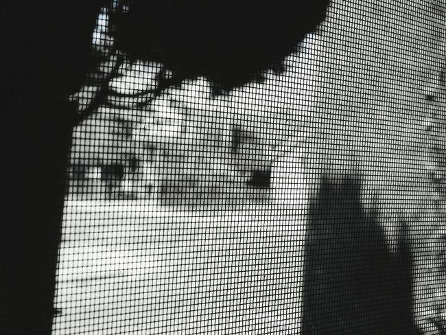 Taking Photos Waycoolshots EyeEm Best Shots Eyeemfame Photooftheday Way2ill Photography Likeforlike #likemyphoto #qlikemyphotos #like4like #likemypic #likeback #ilikeback #10likes #50likes #100likes #20likes #likere Visualsoflife Strolling Around Eyeemcollection Nikonphotography Santaclara Blackandwhite Nikonl840