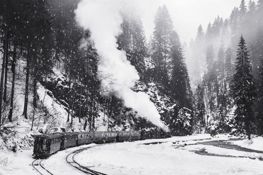 Steam train in winter from Valea Vaserului, Maramures - Romania. Ice Maramures Romania Steam Transportation Winter Blackandwhite Cold Temperature Mocanita Outdoors River Sky Snow Snowing Steam Locomotive Steam Train Train Tree Valea Vaserului