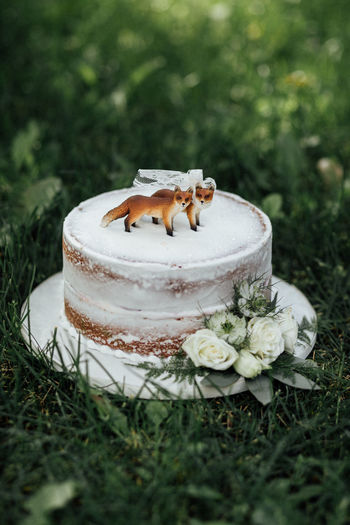 Close-up of cake on field