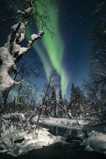 Auroras in -30C Aurora Borealis Lapland Lapland, Finland Northern Lights Water Reflections Aurora Polaris Beauty In Nature Cold Temperature Green Color Landscape Natural Phenomenon Nature Night No People Outdoors River Sky Snow Star - Space Tranquil Scene Tree Water Winter