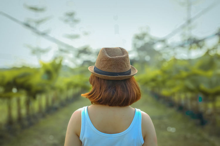Rear view of woman wearing hat in vineyard