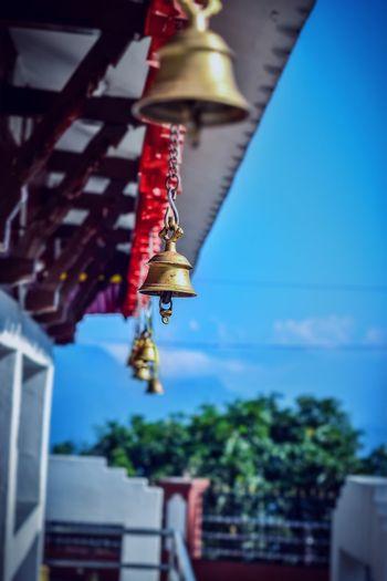 Hanging Focus