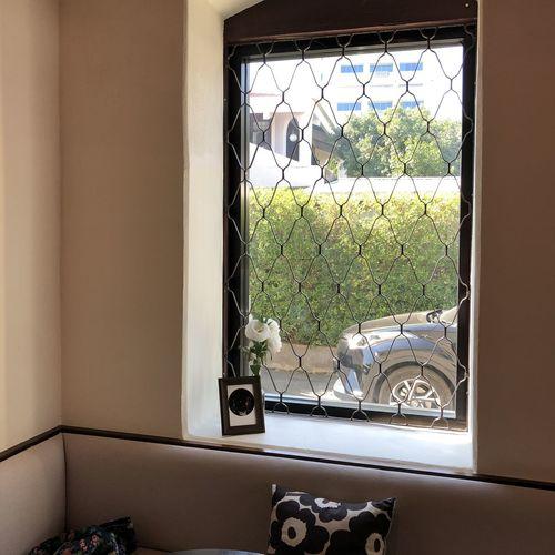 Plants seen through window of building