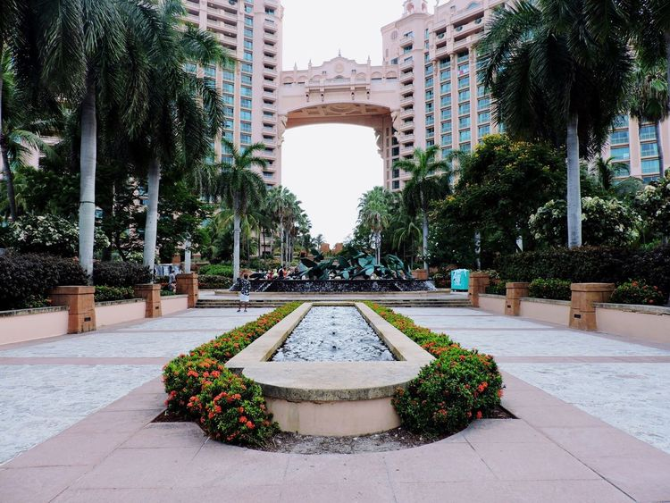 Almost Symmetrical / Atlantis, Paradise Island, Bahamas| Architecture Built Structure Building Exterior Statue Fountain Walkway Decoration Pathway Day Outdoors Atlantis, Paradise Island, Bahamas The Bahamas Paradise Island, Bahamas I Live Where You Vacation