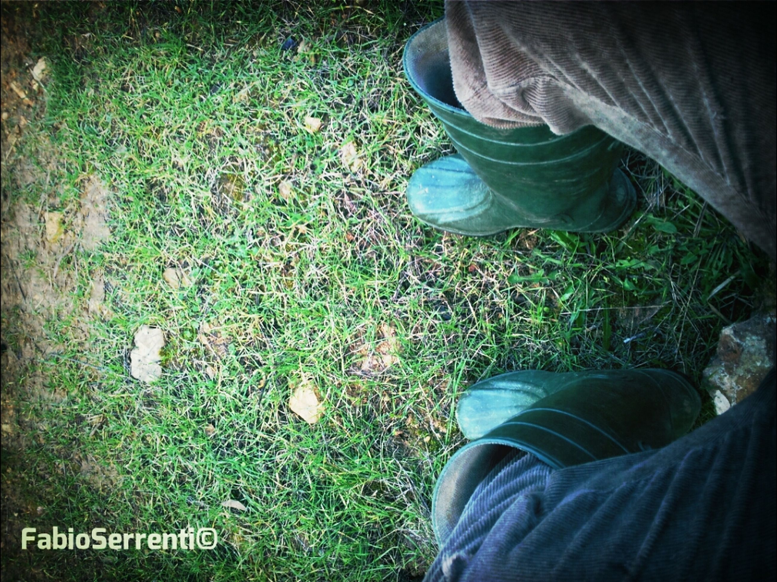 grass, low section, person, field, men, shoe, lifestyles, grassy, standing, leisure activity, jeans, high angle view, casual clothing, unrecognizable person, human foot, personal perspective, footwear