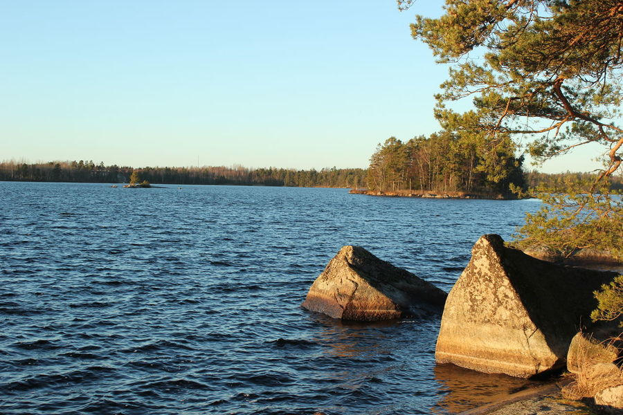 Beauty In Nature Clear Sky Day Lake Nature No People Outdoors Scenics Sky Tranquil Scene Tranquility Tree Water Växjö  Sweden