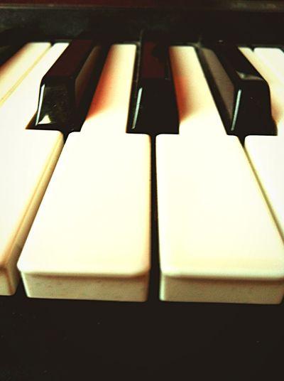 My synthesizer Black & White