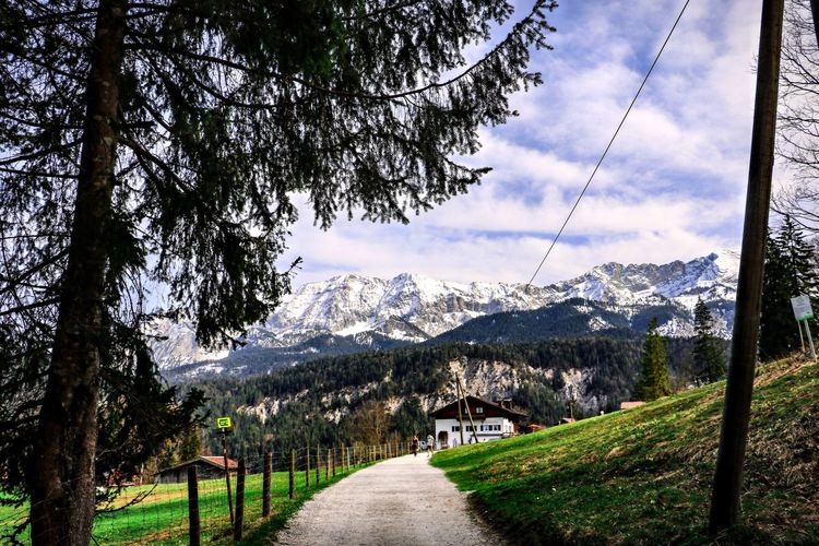 Tree Mountain Nature Scenics - Nature Beauty In Nature Mountain Range Landscape Tranquil Scene Tranquility Footpath Outdoors Grass No People Partnachalm Garmisch-partenkirchen
