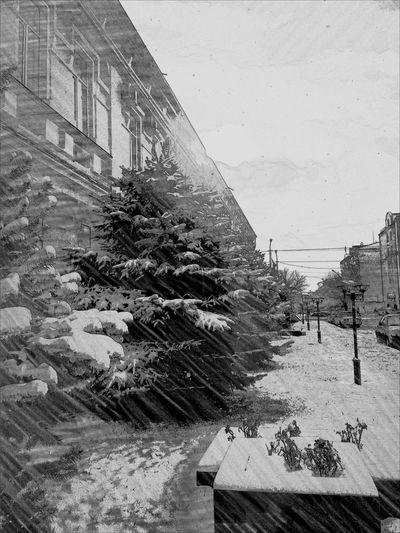 Winter Grozniy Chechnya Грозный Mylove