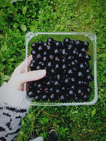 Sumer berries
