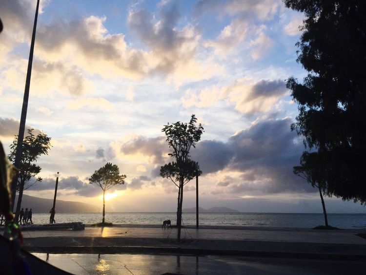 Vlore Albania Tree Sea Sky Beach Cloud - Sky Beauty In Nature Water Scenics Nature Palm Tree Sunset Tranquility Silhouette Tranquil Scene Horizon Over Water Outdoors No People