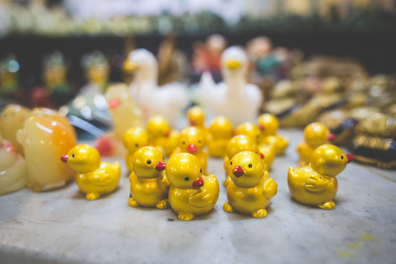 Lucky ducky eh. Toys Close-up Cute Ducks Focus On Foreground Indoors  No People Statuettes Yellow Business Stories