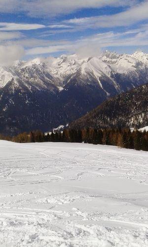 Skiing Snow Ski Mountains Mountain Sun Passo Brocon Tree Nature Sky How Do You See Climate Change? Hello World My Winter Favorites