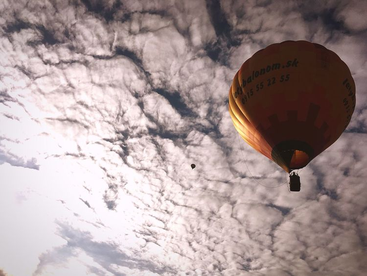 Morning Cloud - Sky Sky Hot Air Balloon Mid-air Flying Low Angle View Adventure Outdoors Transportation Air Vehicle No People Day Nature Multi Colored Ballooning Festival