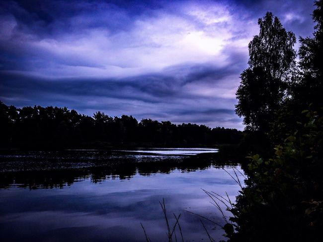 Waldsee...