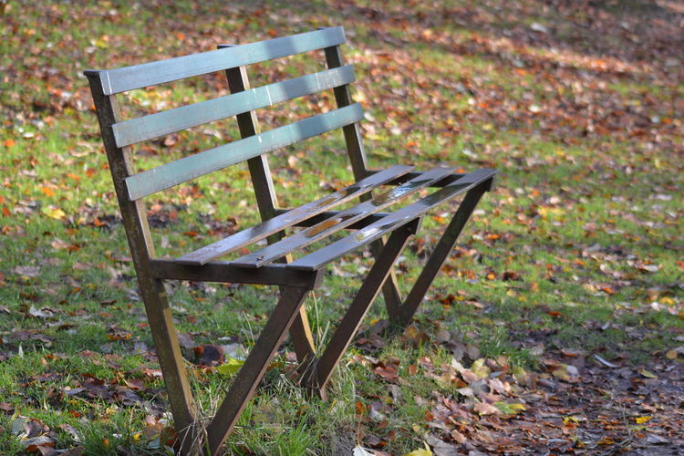 Autumn Scene Bench Empty Nikon D5200 No People Nofilternoedit Outdoors To Cold To Sit