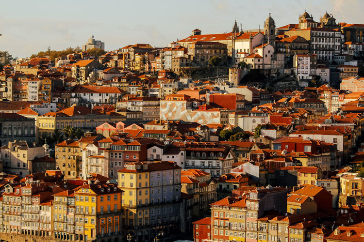 Architecture Building Exterior Built Structure Residential District City Building Cityscape Crowded Crowd Roof Community High Angle View House Sky Nature Day Outdoors Town TOWNSCAPE Roof Tile Settlement Porto Portugal EyeEm Best Shots EyeEm Nature Lover