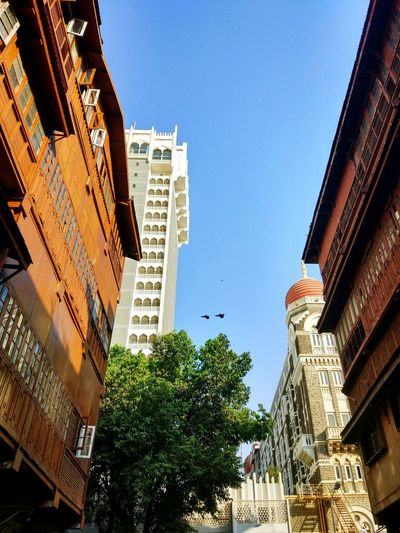 India Mumbai Colaba Architecture Building Exterior Built Structure Low Angle View Travel Destinations Outdoors Day Skyscraper No People City Clear Sky Modern Sky