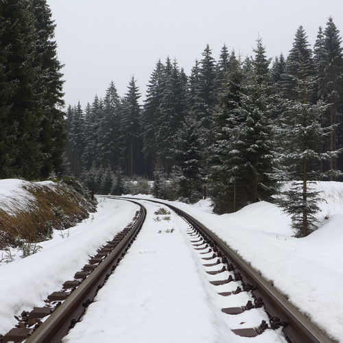 Snow covered railroad track in forest against clear sky