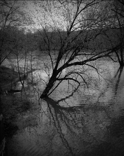 Overwhelmed... EyeEm EyeEm Nature Lover Delaware River Flooding Ptsd How I Feel Melancholic Landscapes Rivers Black And White Photography Smartphone Photography