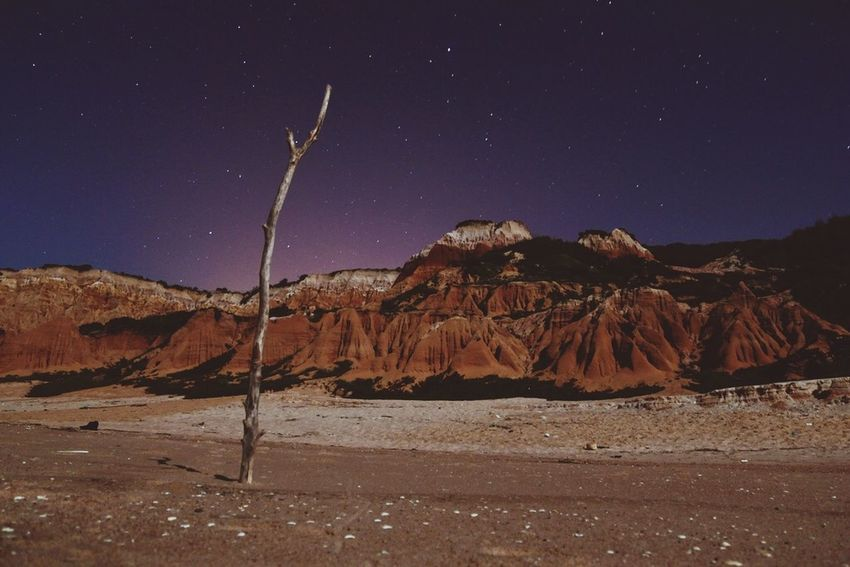 The Great Outdoors - 2015 EyeEm Awards Beach Nightphotography Stars They Only Came Out At Night