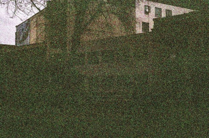 Leica M6 Voigtlander Lens Film Built Structure Xray Damaged Film Portland, OR Koduckgirl