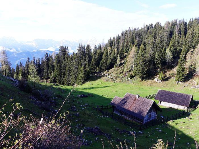 dobratsch Tree Sky Grass Farmland