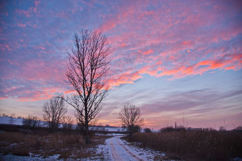 Tree Sunset Sky Winter Cloud - Sky Snow Beauty In Nature Nature Scenics Outdoors Landscape Dramatic Sky Cold Temperature No People