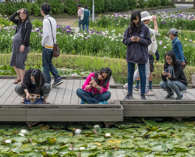 Locals engrossed with their smart phone in a park in Itako, Japan Day Engrossed Garden Girls Outdoors Park Person Relax Smart Phone Tourist Travel