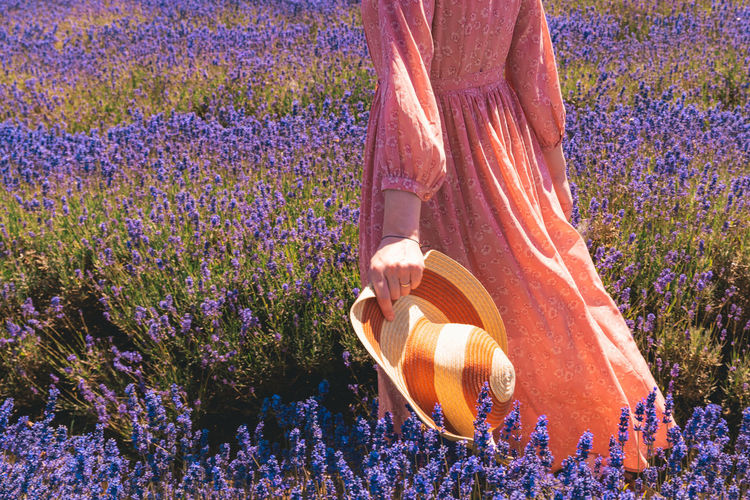 Low section of woman standing on lavender field