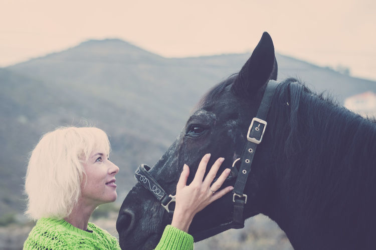 Blonde hair happy woman look and hug with care and sweetness her best friend black horse in the outdoor leisure activity - together and friendship concept with human and animal Mammal One Person Headshot Real People One Animal Domestic Animals Domestic Leisure Activity Women Pets Lifestyles Vertebrate Hair Animal Wildlife Focus On Foreground Adult Portrait Day Outdoors Bonding Care Farm Mountain Range Blond Hair One Woman Only People Caucasian Casual Clothing Smiling Togetherness Friends Happiness Sweetness Black Horse