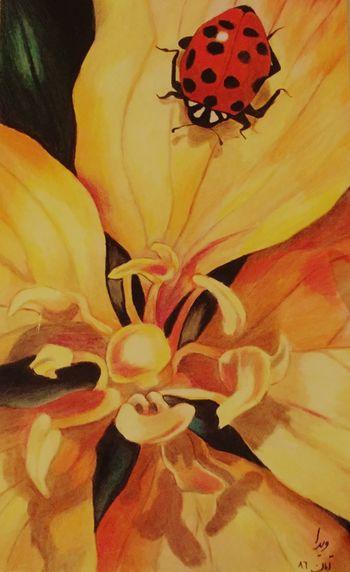 Mypaint Oldpaint Paint Art Artist Iran