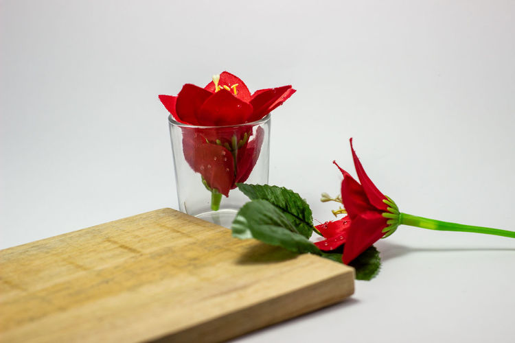 Close-up of red rose on table against white background