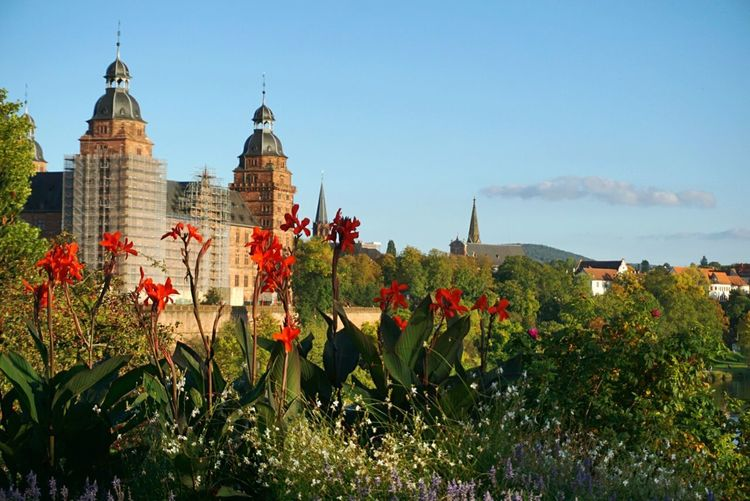 Johannisburg, Aschaffenburg Architecture Flower Travel Destinations Plant Built Structure Outdoors Business Finance And Industry Building Exterior Day Sky Tree No People Clear Sky Nature Politics And Government Landscape_Collection Autumn Castle Cityscape