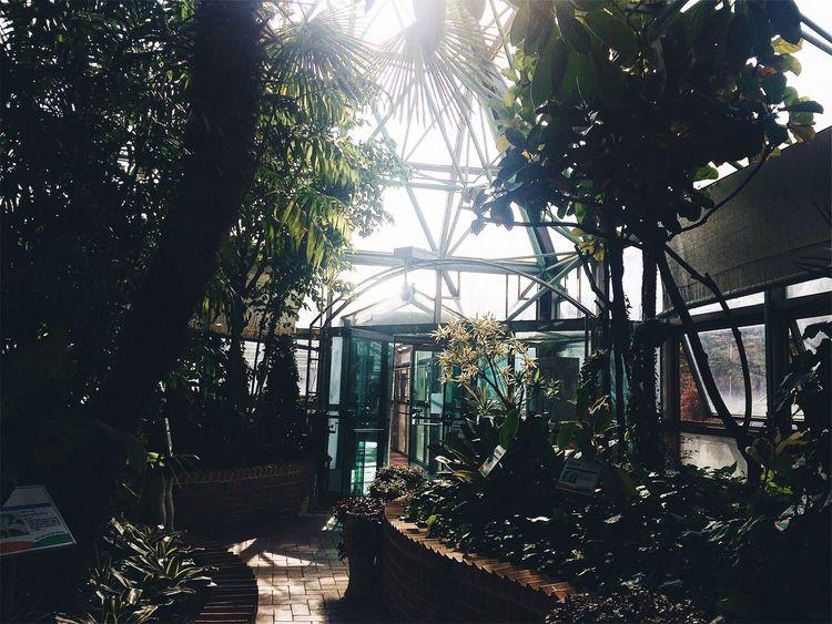 식물원 Nature 식물원 Botanical Gardens Ansan Korea