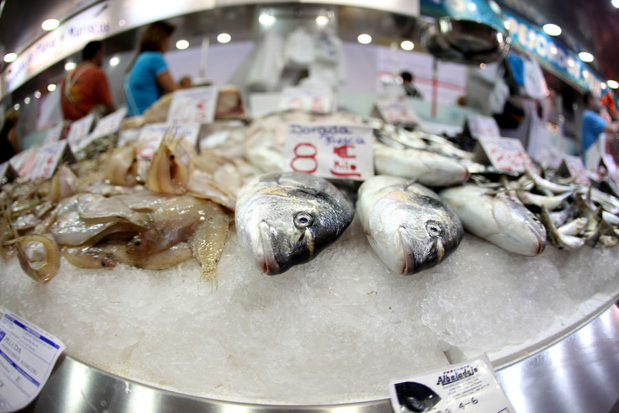 Food And Drink Fresh Fish Dead Fısh Fish Fish Market Fisheye Food Iliana⚓️ Market No People Price Tag Seafood