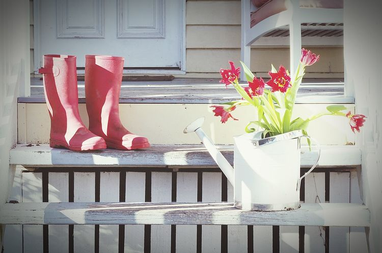 Flower Door House Outdoors Building Exterior Red Day No People Springtime Boots Gum Boots Galoshes Gardening Gardeningtime