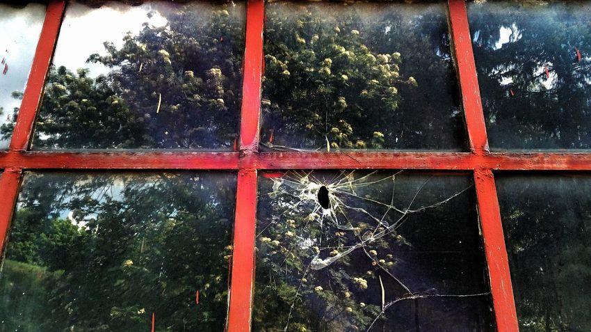 Window Glass - Material Reflection Outdoors Glass Broken Window