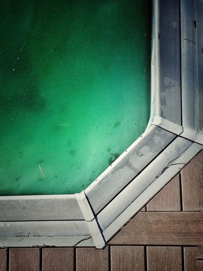 High angle view of algae growing in swimming pool