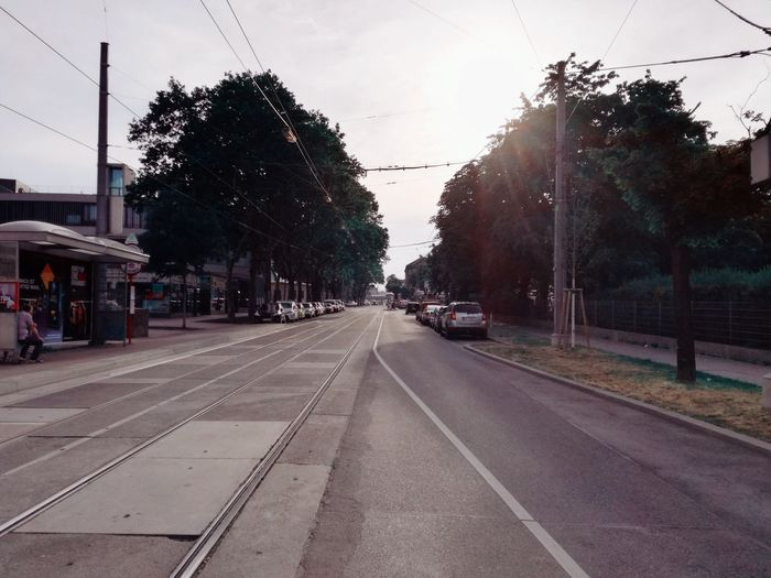 Tram Station  Tramway Sunset Sunday Afternoon No People Tree City Road Sky vanishing point Tramway Tram Track The Way Forward Straight Diminishing Perspective Rail Transportation Empty Road Treelined Road Marking